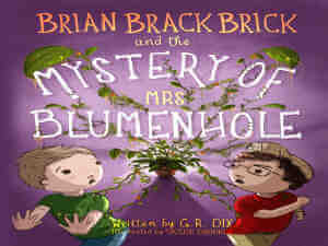 Brian Brackbrick and the Mystery of Mrs Blumenhole by G R Dix