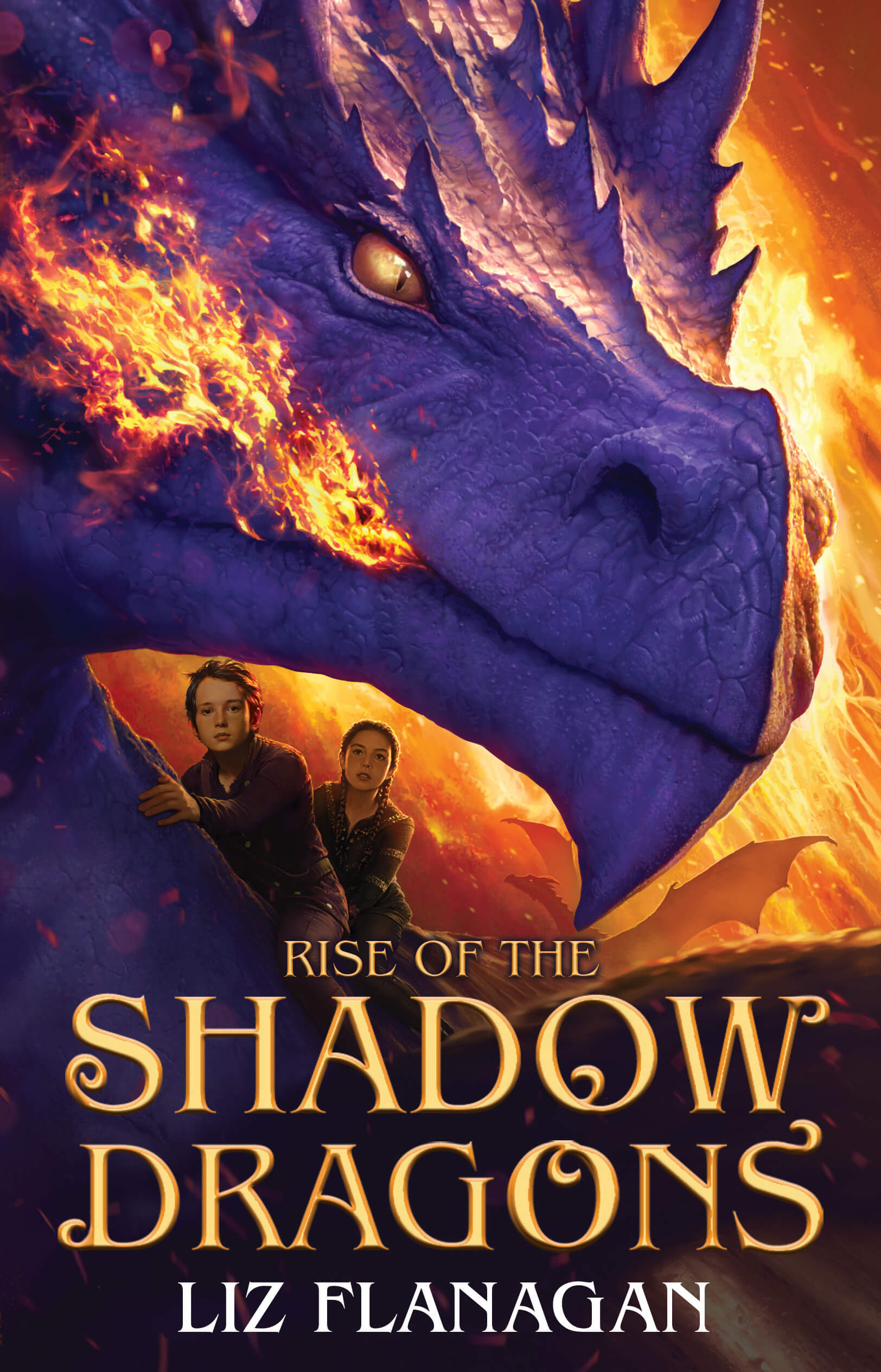 Cover image Rise of the Shadow Dragons by Liz Flanagan